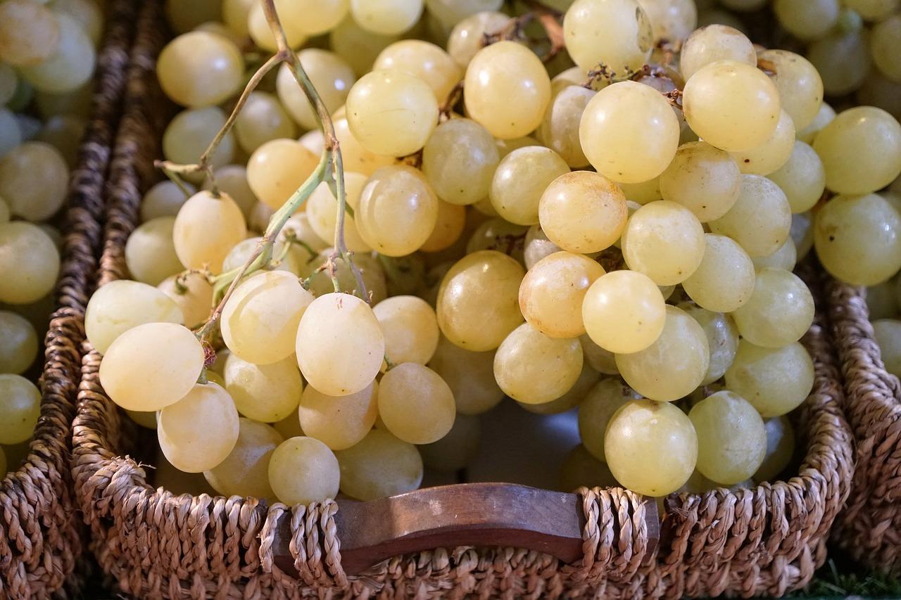 Crema reafirmante de aceite de semillas de uva